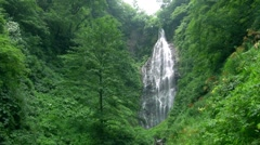 Kurokuma Waterfall, Aomori Prefecture, Japan Stock Footage