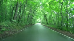 Road in the countryside, Aomori Prefecture, Japan Stock Footage