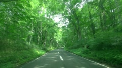 Road in the countryside, Akita Prefecture, Japan Stock Footage