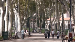 A park,Istanbul,Turkey Stock Footage