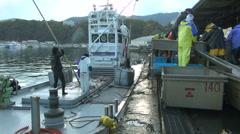 People working at fishing boat, Hokkaido, Japan Stock Footage