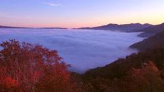Fog over Lake Towada, Aomori Prefecture, Japan Stock Footage
