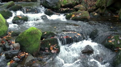 Mount Chokai, Yamagata Prefecture, Japan, river, stream Stock Footage