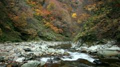 Mountain stream in Aomori Prefecture, Japan Stock Footage
