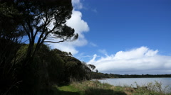 New Zealand Catlins Tahakopa Bay cloud over jetty Stock Footage