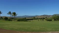 Pan across trees and mountains in Hawaii Stock Footage