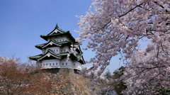 Cherry blossoms at Hirosaki Castle, Aomori Prefecture, Japan Stock Footage