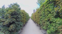 Alley in Garden of Tuileries at autumn sunny day. Aerial view Stock Footage