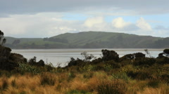 New Zealand Catlins Waikawa Bay and hills Stock Footage