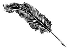 Vintage feather quill pen illustration Stock Illustration