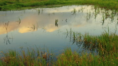 Spring landscape in the morning, countryside sky and clouds reflected on pond Stock Footage