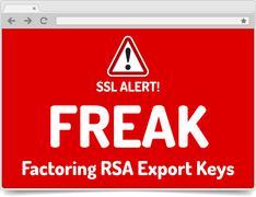 FREAK - Factoring RSA Export Keys Security - Warning in simple opened browser - stock illustration