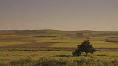 Agriculture,Summer fields on the horizon Stock Footage