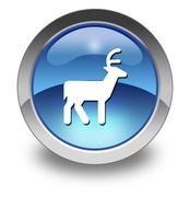 Icon, Button, Pictogram Deer - stock illustration