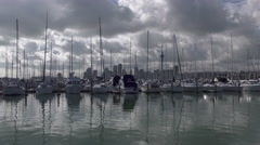 Westhaven Marina, Auckland New Zealand Stock Footage