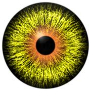 Yellow alien eye with orange ring around the pupil Stock Illustration