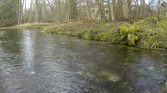 Clear stream flowing in the park Stock Footage