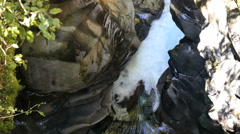 New Zealand Fiordland clear waterfall flows into gorge pool Stock Footage
