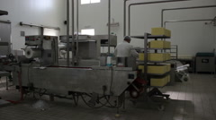 Workers production yellow cheese and packaging in dairy factory. People working. - stock footage