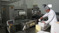 Production yellow cheese in dairy. Worker packaging cheese in box. Food industry - stock footage