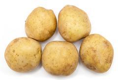Potatoes on a white background Stock Photos
