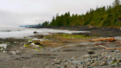 4K Remote Desolate Natural Beach on Pacific North West, Coast of North Amercia Stock Footage