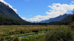 Stock Video Footage of New Zealand Milford Sound canal in wetland and mountains