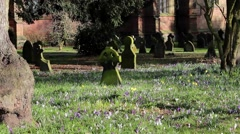 Picturesque Church Yard in Beautiful Morning Light - pretty colorful flowers Stock Footage