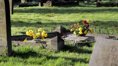 Close Up Old Grave & fresh flowers - Ancient Rural Church Yard in Morning Light Stock Footage