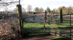 Tracking Show through gate of Allotment - Rural Village / Town Scenes Stock Footage