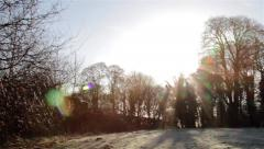 Pan - Sun Lens Flare Frosty Grass Field - Morning Dew & Long Shadows From Trees Stock Footage