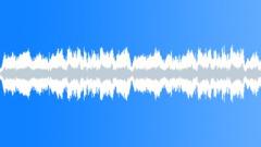 Marc Pittman - Broken Promises Picking Verse Stock Music
