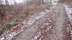 Pathway in a snowy forest Stock Footage