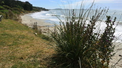 New Zealand Otago Katiki Beach grassy slopes curve along shore Stock Footage