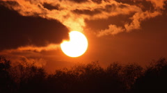 The sun above forest close up time lapse video, strong zoom Stock Footage