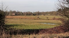 Wind Blows Foliage - Beautiful Rural Marshland - Countryside House in Distance Stock Footage