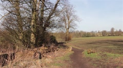 Countryside Path next to Field - Rural Scene Stock Footage
