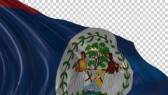 Flag of Belize - stock footage