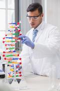 Scientist analysing dna helix Stock Photos