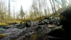 Fresh flowing mountain stream Stock Footage