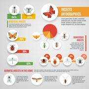 Insects Infographic Set Stock Illustration