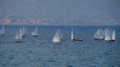Regatta, a lot of small sailing boats Stock Footage