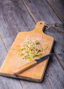 Fresh lentil and wheat sprouts on cutting board. Stock Photos