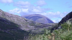 Landscape and ferns near Forth Worth in Scotland Stock Footage