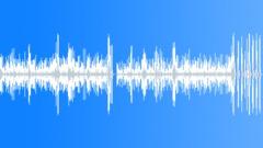 Fast accordion polka2 (+ REVERB) - stock music