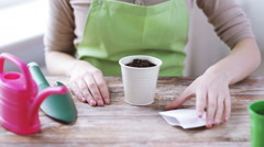 Close up of woman's hands planting seeds in small pot Stock Footage