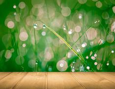 Wet springtime grass with bokeh effect and wooden floor.. Stock Illustration