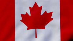 FullHD 60 FPS seamless loop with waving flag of Canada Stock Footage