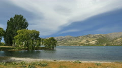 New Zealand Lake Dunstan willow trees and cove Stock Footage