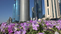 Doha office towers behind colorful flowers Stock Footage